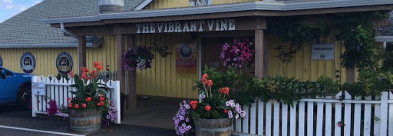 Toast The Okanagan Wine Tours