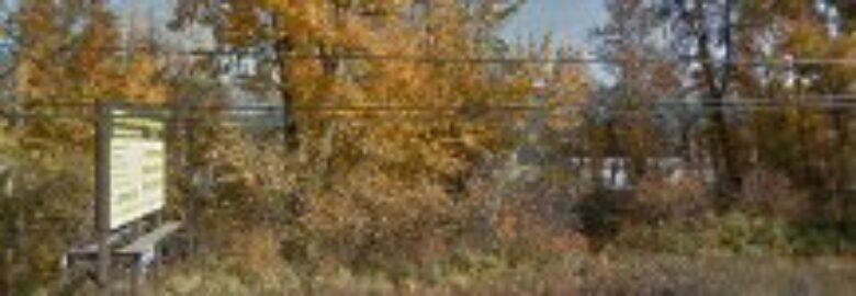 Creek Run Developments Ltd