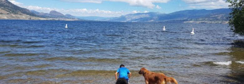 Okanagan Lake Park Dog Beach