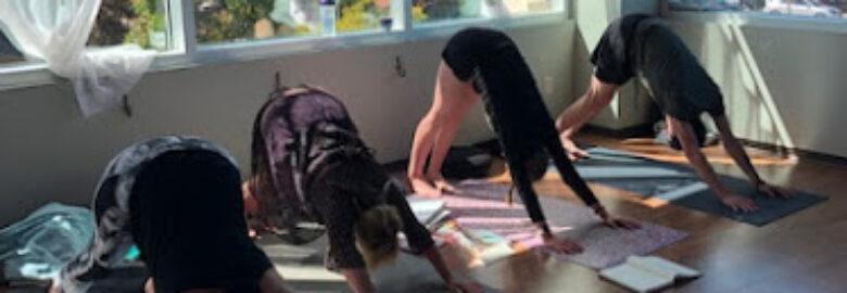 North American School of Yoga Science