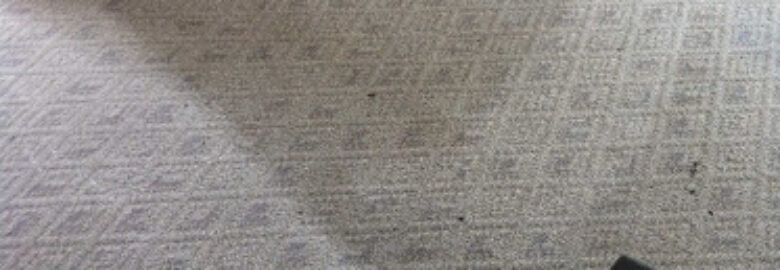Ecodry Carpet and Upholstery Carpet Cleaning
