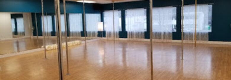 Okanagan Pole Dance + Aerial Fitness