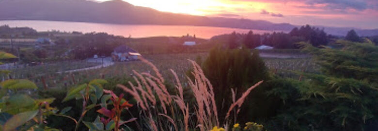 The Farmhouse Vacation Rental and Vineyard