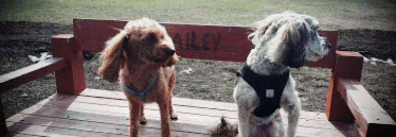 Mutrie Dog Park