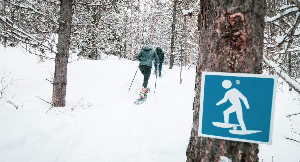 Top 5 Winter Activities In West Kelowna